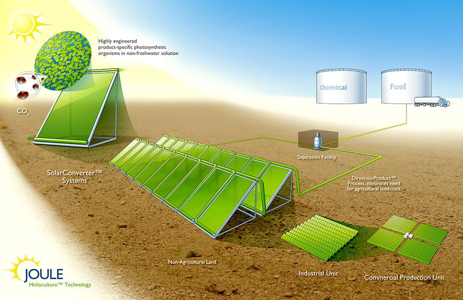 biodiesel the way forward